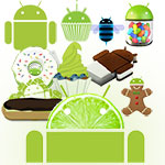 The Next Android Version