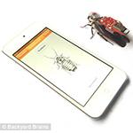 Cockroach Backpack App
