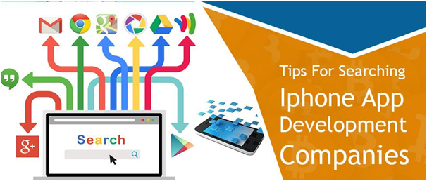 web and mobile app developer